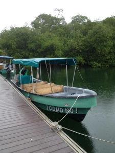 Bocas Del Toro-Red Frog Resort
